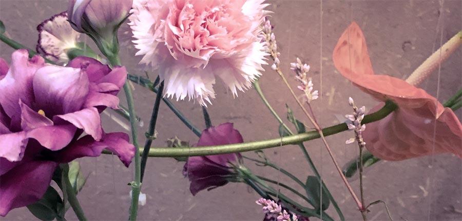 Flores en tonos rosas