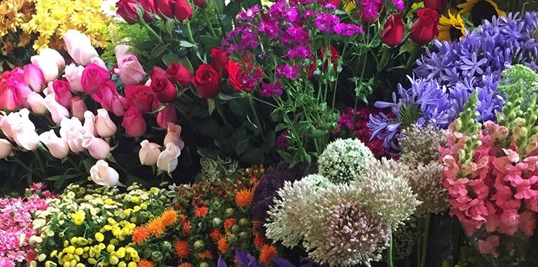 Flores en el Mercado de Jamaica