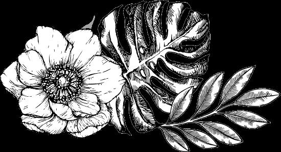 Botanica en blanco y negro