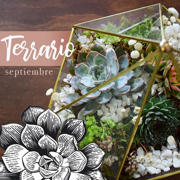 Curso Terrario