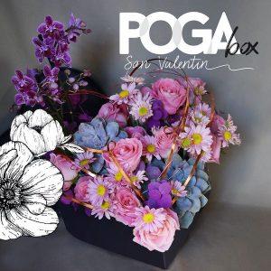 Poga Box San Valentín 2021