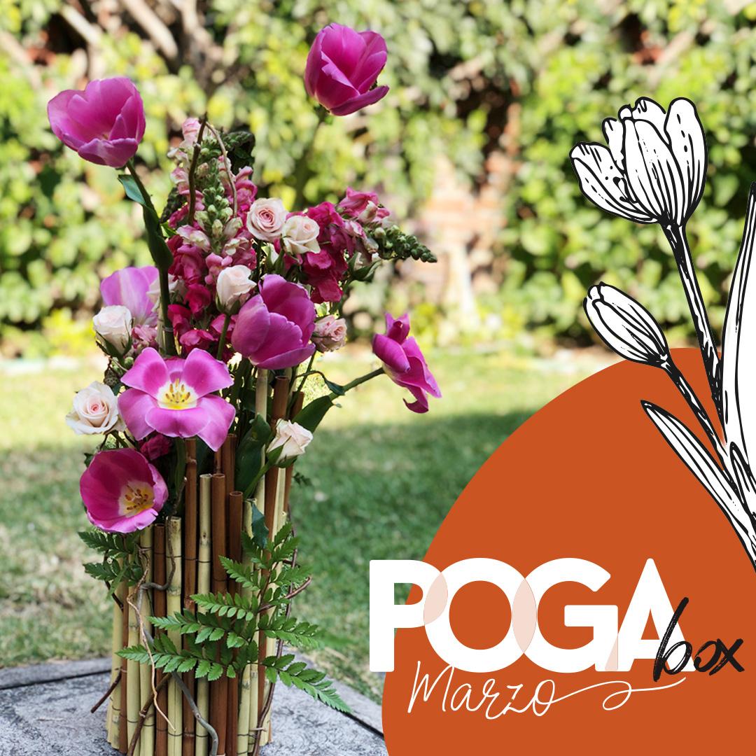 Arreglo para PogaBox de primavera
